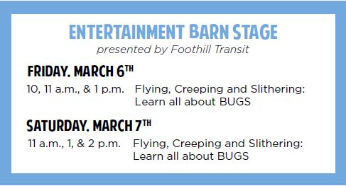 Entertainment Barn Stage Schedule for STEA2M Fair 2020